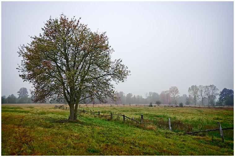 Kurpie jesienią