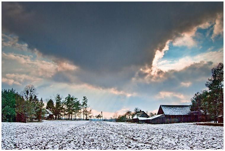 Gąski zimą