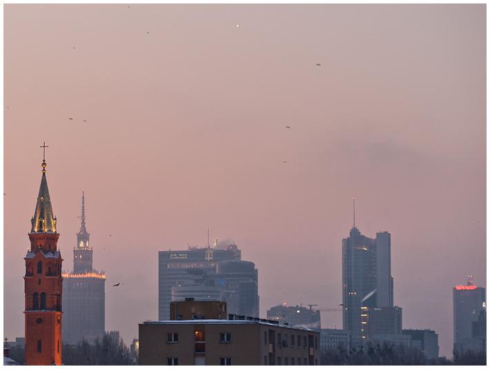 Wenus o świcie nad Warszawą