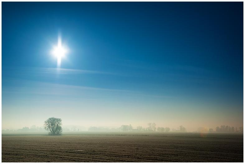 Fotografia - pole zimą