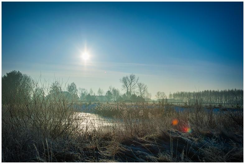Fotografia - pola zimą